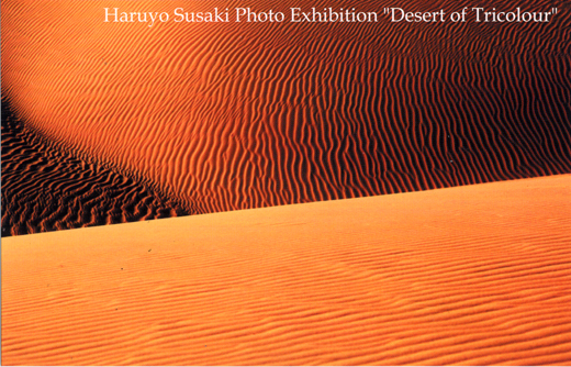 須崎春代写真展「砂の海を越えて」